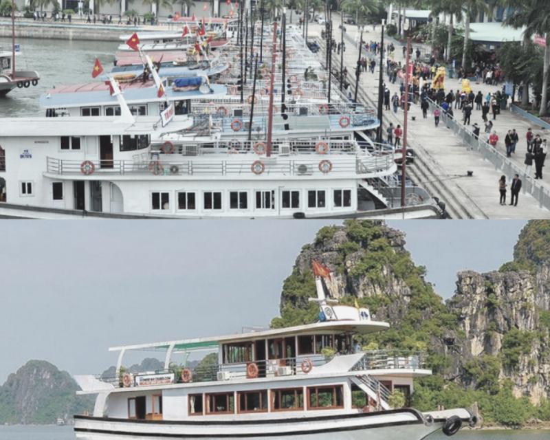Cho thuê tàu thăm quan Vịnh Hạ Long trong ngày