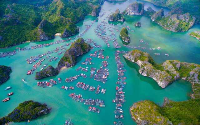 Tour Vịnh Lan Hạ 1 Ngày giá rẻ